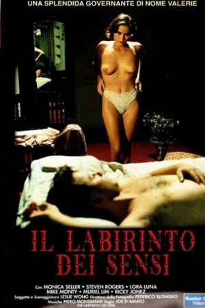 11 Days 11 Nights: Part 6 - The Labyrinth of Love / Il Labirinto dei Sensi (1993)