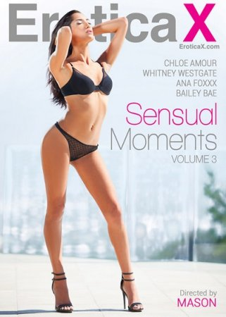 Sensual Moments 3 (SOFTCORE VERSION / 2014)