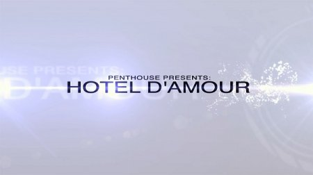 Hotel d'amour (SOFTCORE VERSION / 2016)