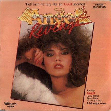 Angel's Revenge (1985)